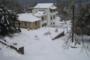 Ellinospito_holidays_in_Hotel_Crete_Rethymnon_Plakias