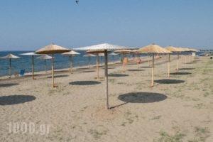 Mikiverna Houses & Apartments_best deals_Apartment_Macedonia_Halkidiki_Poligyros