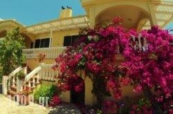 Appartamenti Angelika in Perdika, Thesprotia, Epirus