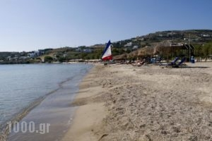 Camping Koula_travel_packages_in_Cyclades Islands_Paros_Paros Chora