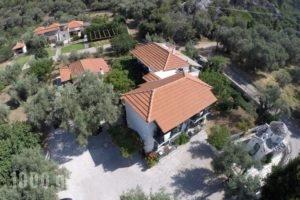 Katerina_best deals_Hotel_Sporades Islands_Skopelos_Skopelos Chora