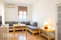 Janos Studios and Apartments in Piso Livadi, Paros, Cyclades Islands