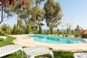 Danai Beach Resort & Villas_lowest prices_in_Villa_Macedonia_Halkidiki_Kassandreia