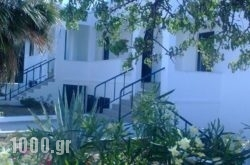 Moscha Studios in Batsi, Andros, Cyclades Islands