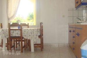 Aegean Apartments_best prices_in_Apartment_Thessaly_Larisa_Ambelakia