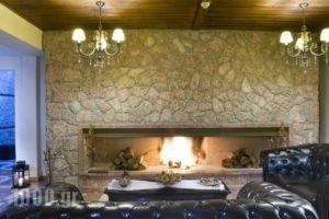 Xenonas Iresioni_best deals_Hotel_Central Greece_Viotia_Arachova