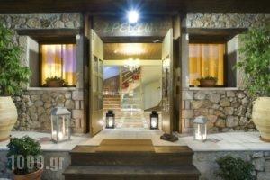 Xenonas Iresioni_lowest prices_in_Hotel_Central Greece_Viotia_Arachova
