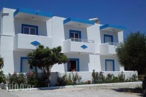 Mayflower 2_accommodation_in_Hotel_Dodekanessos Islands_Kos_Kos Rest Areas