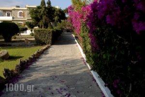 Oceanides Apartments_best prices_in_Apartment_Crete_Lasithi_Sitia
