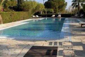 Oceanides Apartments_lowest prices_in_Apartment_Crete_Lasithi_Sitia