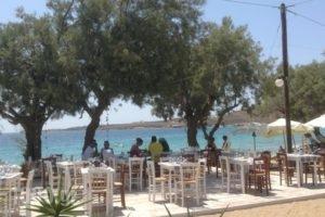 Krios Beach Camping_holidays_in_Hotel_Cyclades Islands_Paros_Paros Chora