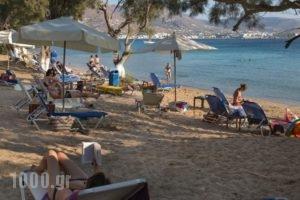 Krios Beach Camping_travel_packages_in_Cyclades Islands_Paros_Paros Chora