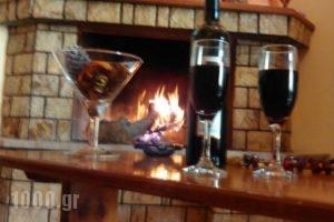 Guesthouse Chrysa_holidays_in_Hotel_Central Greece_Viotia_Arachova