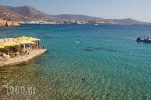 Petalides Apartments_holidays_in_Apartment_Cyclades Islands_Paros_Paros Chora