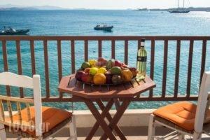 Petalides Apartments_accommodation_in_Apartment_Cyclades Islands_Paros_Paros Chora