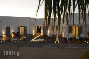 Queen Boutique Suites_holidays_in_Hotel_Cyclades Islands_Mykonos_Mykonos ora