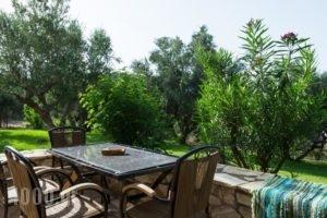 Koroni Village_holidays_in_Hotel_Thessaly_Magnesia_Koropi