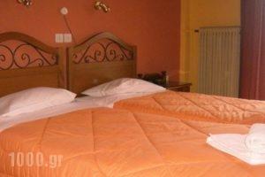 Plumeria Flowery_lowest prices_in_Hotel_Central Greece_Fokida_Delfi