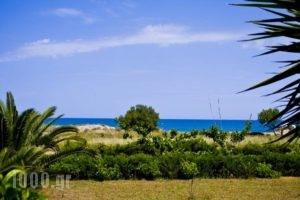 Chrissas Apartments_holidays_in_Apartment_Crete_Rethymnon_Rethymnon City