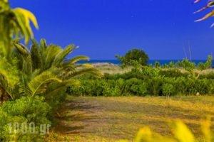Chrissas Apartments_best deals_Apartment_Crete_Rethymnon_Rethymnon City