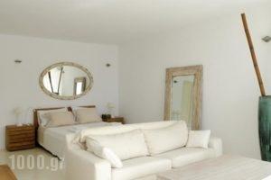 Villa Joy_lowest prices_in_Villa_Cyclades Islands_Mykonos_Mykonos ora