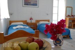 Kalamouria Studios_accommodation_in_Hotel_Cyclades Islands_Naxos_Naxos chora