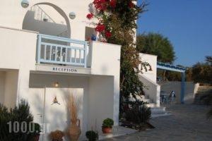 Kalamouria Studios_holidays_in_Hotel_Cyclades Islands_Naxos_Naxos chora