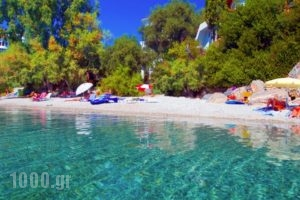 Leda Village Resort_travel_packages_in_Central Greece_Evia_Istiea