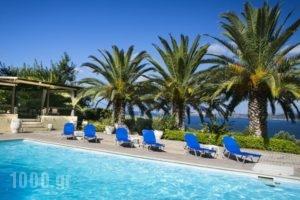 Metaxatos Apartments_accommodation_in_Apartment_Ionian Islands_Kefalonia_Argostoli