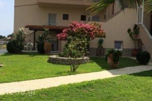 Nikolaidis House_accommodation_in_Hotel_Macedonia_Halkidiki_Haniotis - Chaniotis