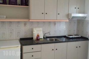 Nikolaidis House_best deals_Hotel_Macedonia_Halkidiki_Haniotis - Chaniotis