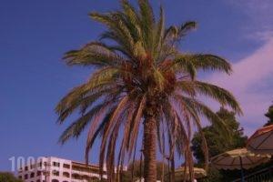 Romantza Mare_best prices_in_Hotel_Dodekanessos Islands_Rhodes_Kallithea