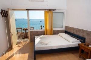 Petalides Apartments_lowest prices_in_Apartment_Cyclades Islands_Paros_Paros Chora