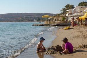 Petalides Apartments_best deals_Apartment_Cyclades Islands_Paros_Paros Chora