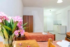 Liris Studios_best prices_in_Hotel_Ionian Islands_Zakinthos_Laganas