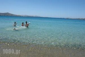 Krios Beach Camping_best deals_Hotel_Cyclades Islands_Paros_Paros Chora