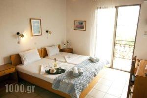 Studios Dina_accommodation_in_Hotel_Aegean Islands_Thasos_Thasos Chora
