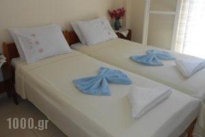 Meletis Studios_best prices_in_Hotel_Cyclades Islands_Paros_Paros Chora