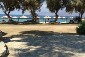 Maragas Beach Camping_accommodation_in_Hotel_Cyclades Islands_Naxos_Naxos chora