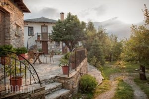 Oriades_accommodation_in_Hotel_Thessaly_Magnesia_Pinakates