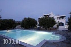 Diamantis Studios&Apartments in Mikri Vigla, Naxos, Cyclades Islands