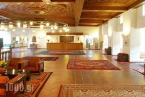 Amalia Hotel Kalambaka_best prices_in_Hotel_Thessaly_Trikala_Trikala City