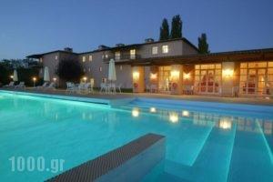 Amalia Hotel Kalambaka_accommodation_in_Hotel_Thessaly_Trikala_Trikala City