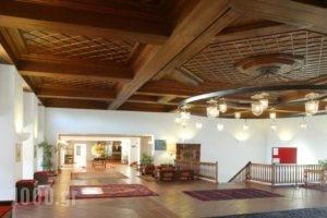 Amalia Hotel Kalambaka_best deals_Hotel_Thessaly_Trikala_Trikala City
