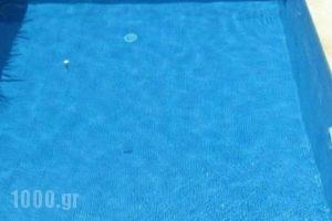 Villa Vasso_best prices_in_Villa_Ionian Islands_Kefalonia_Katelios
