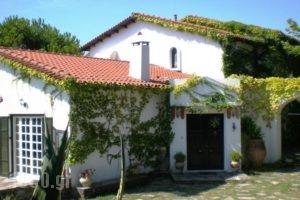Villa Flores_lowest prices_in_Villa_Macedonia_Halkidiki_Kassandreia