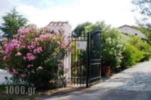 Villa Flores_best prices_in_Villa_Macedonia_Halkidiki_Kassandreia