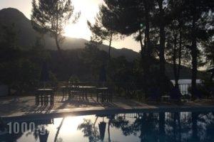 Celia Apartments_lowest prices_in_Apartment_Ionian Islands_Zakinthos_Zakinthos Chora
