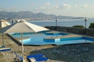Vangelis Villas_best prices_in_Villa_Crete_Lasithi_Ierapetra