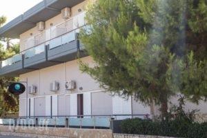 Dimitra Apartments_lowest prices_in_Apartment_Peloponesse_Argolida_Kandia